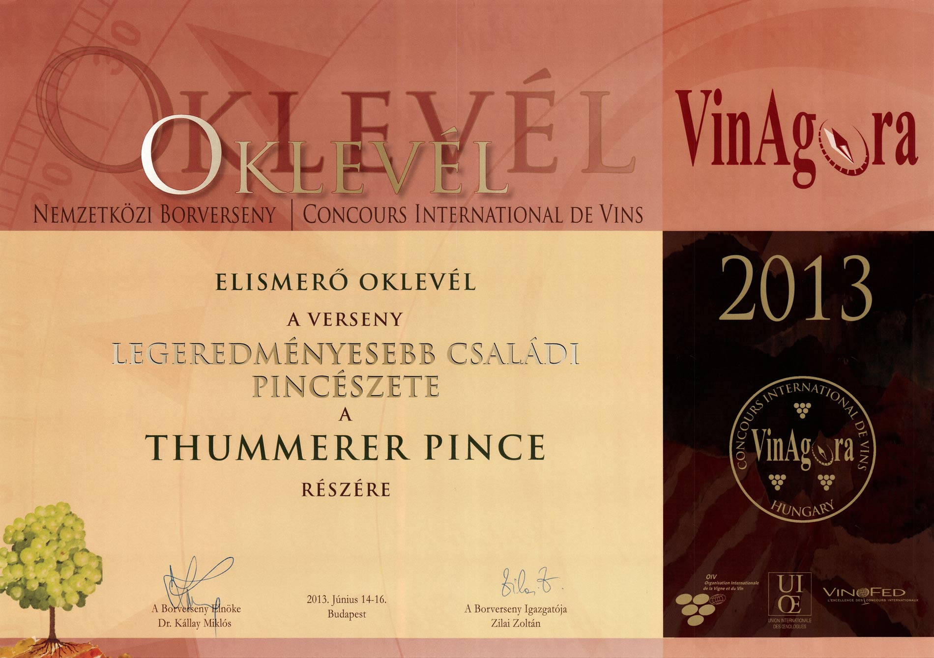 The most efficient Family Wine Cellar of Hungary